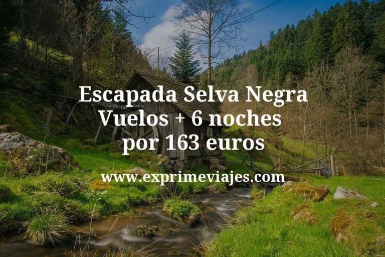 Escapada Selva Negra: Vuelos + 6 noches por 163euros