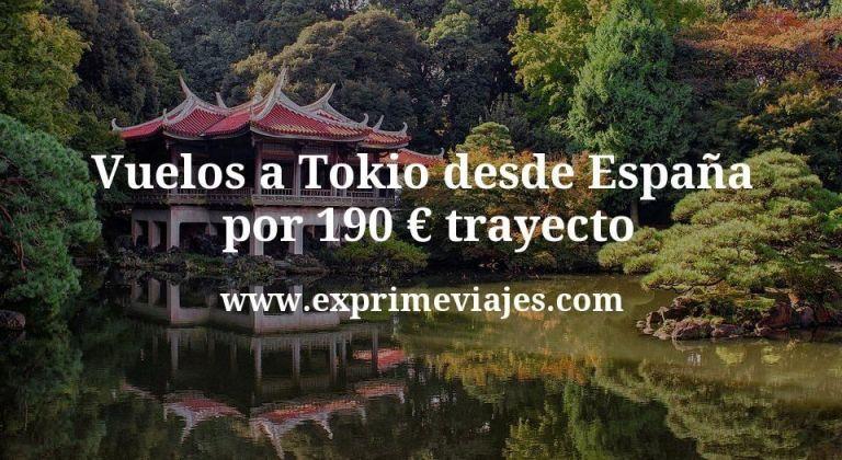 ¡Wow! Vuelos a Tokio desde España por 190€ trayecto (stopover gratis en Shanghai)