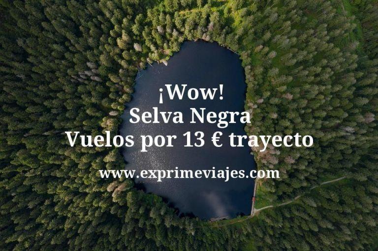 ¡Wow! Selva Negra: Vuelos por 13euros trayecto