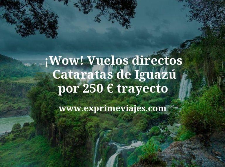¡Wow! Vuelos directos a las Cataratas de Iguazú por 250euros trayecto