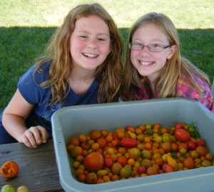school wellness policies girls tomatoes