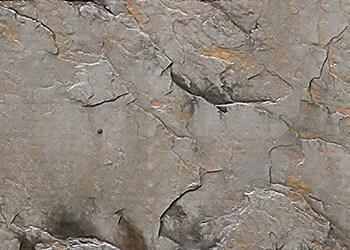 external wall paint