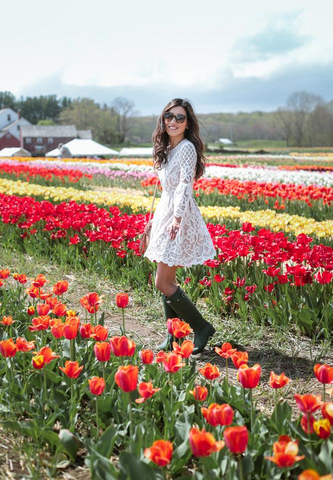 Wicked Tulips Farm White Lace Dress