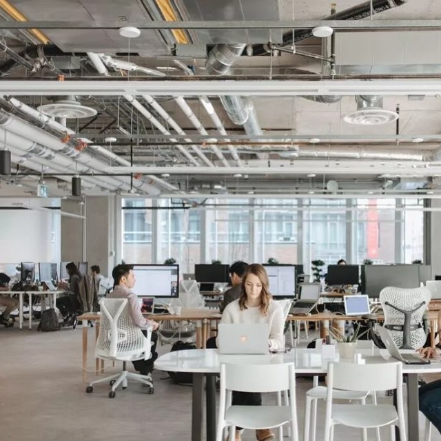 Large Open Office Space With People Working at Desks. Photo by Instagram user @area3design