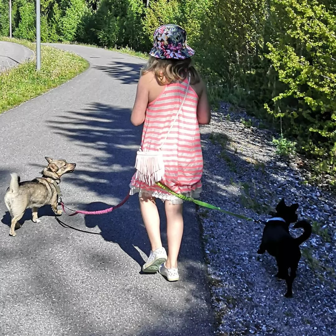 Young Girl Walking Two Dogs on a Sidewalk. Photo by Instagram user @funnarevolution