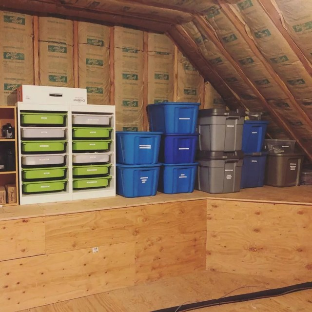 Labeled storage bins in attic. Photo by Instagram user @myhome1projectatatime