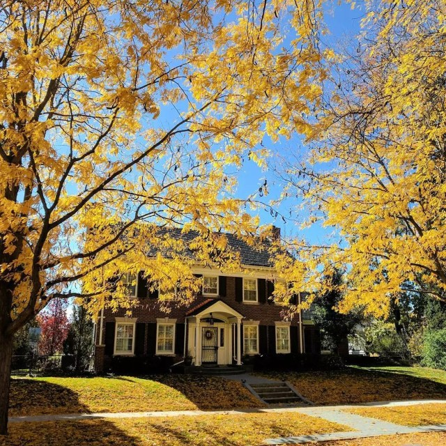 Front view of two-story brick home shaded by trees with yellow-colored leaves. Photo by Instagram user @colorado.wanderings