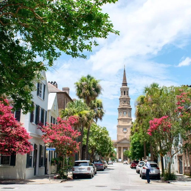 Red trees in Down Charleston, SC. Photo by Instagram user @melissa_sommer