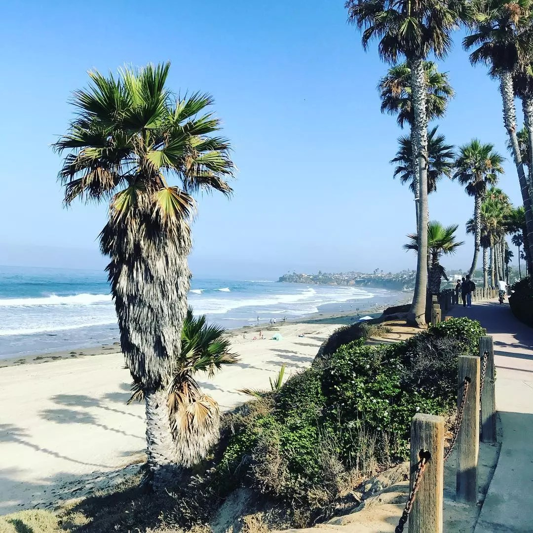 View of Pacific Beach from behind the palm trees on the boardwalk. Photo by Instagram user @uknicholas123