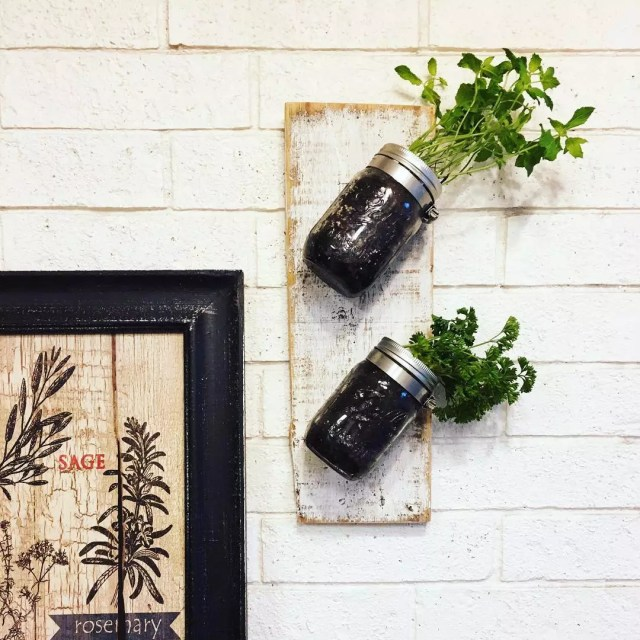 Planters in mason jars on wall. Photo by Instagram user @theweatheredloft