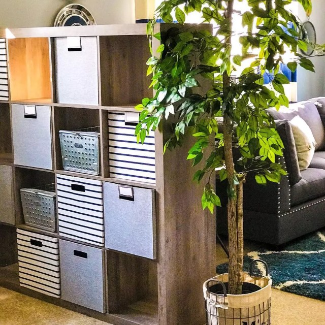Storage cubby divider in studio apartment next to plant. Photo by Instagram user @yellowdoorinterior