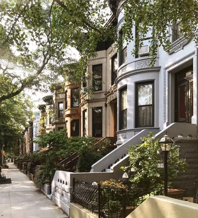 Looking at a row of brownstones from the sidewalk Photo by Instagram user @madufault