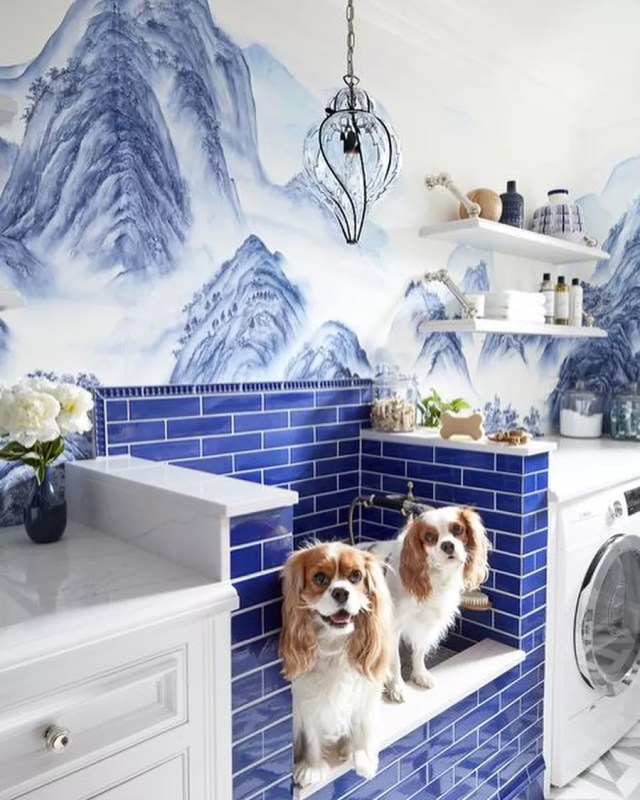 Home Dog Grooming Station in Laundry Room. Photo by Instagram user @wostbrockhome