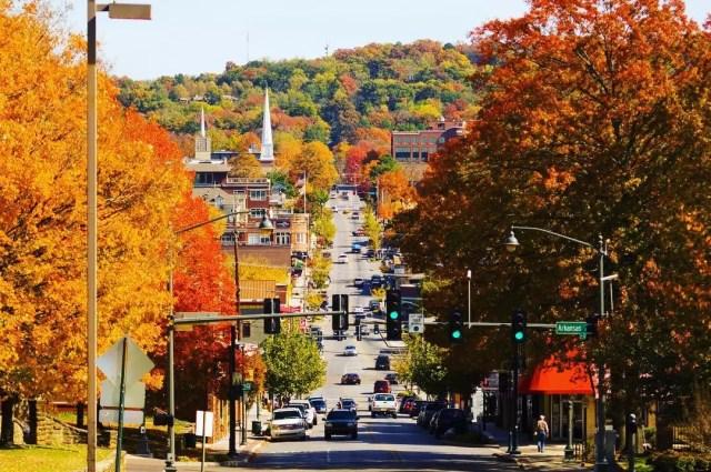 Fall colored trees line main street in Fayatteville, AR photo by Instagram user @fayettevillear