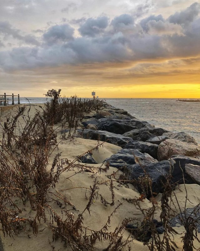 Rocks covered in sand by the ocean at Virginia Beach. Photo by Instagram user @briancoryell