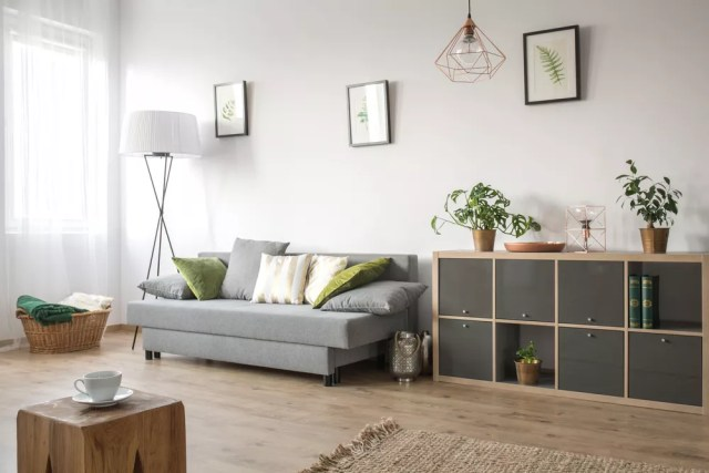 Minimalist living room with white walls and gray couch.