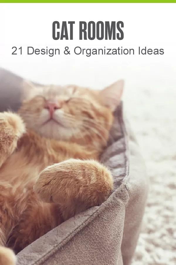 Pinterest Graphic: Cat Rooms: 21 Design & Organization Ideas