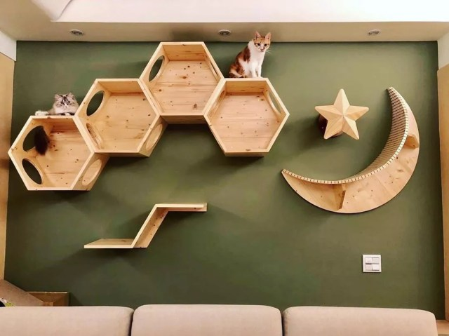 21 Ideas For Designing Organizing A Cat Room Extra Space Storage