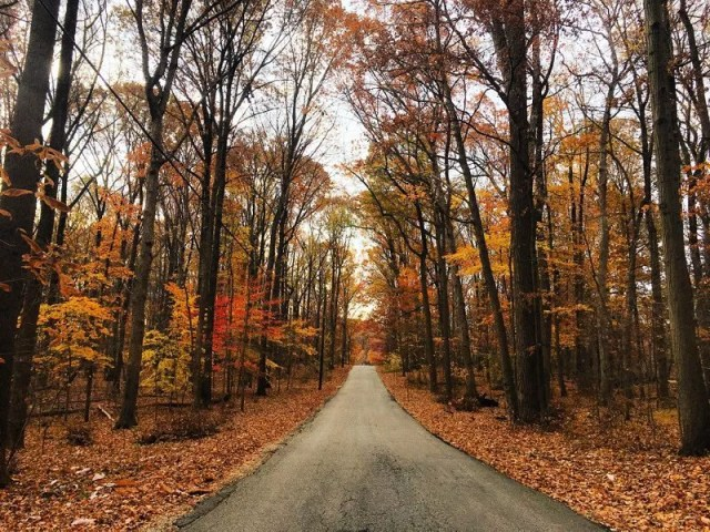 photo of patapsco valley state park trail in arbutus maryland during the fall photo by Instagram user @kbowman0217