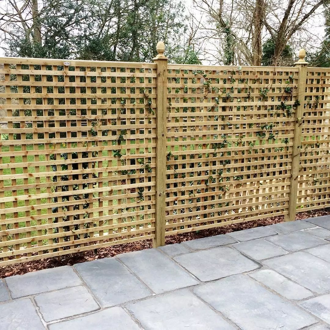 trellis panels set up in a back yard for plants to grow and privacy photo by Instagram user @d.k_fencing_and_landscaping