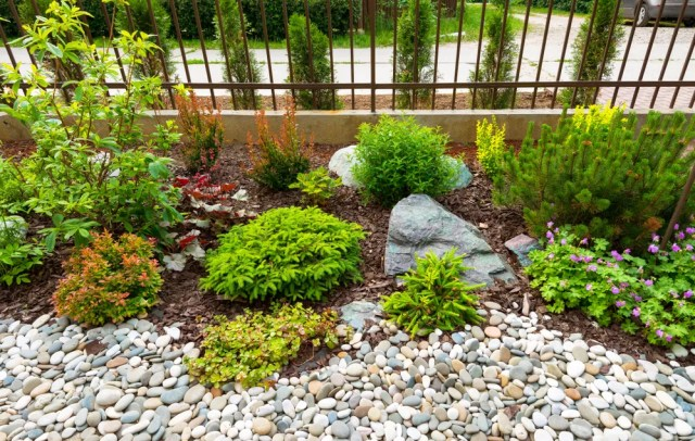 small yard with multiple textures of rock and mulch with small shrubs throughout
