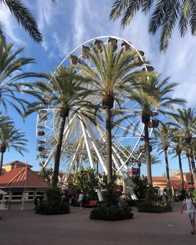 Ferris Wheel and Palm Trees at the Irvine Spectrum Center. Photo by Instagram user @some_magical_places