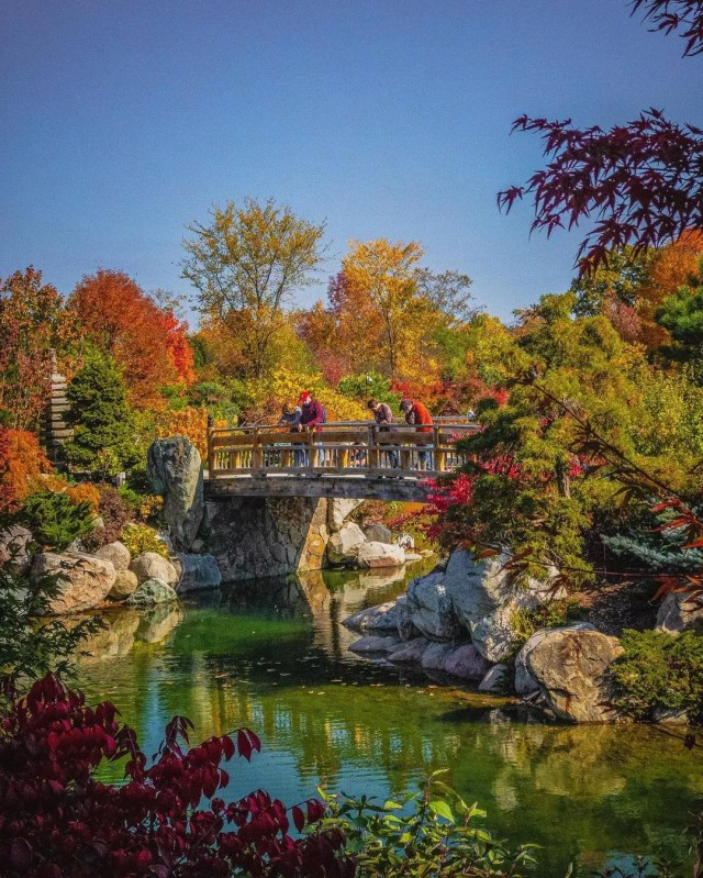 View of bridge at Frederik Meijer Garden & Sculpture Park. Photo by Instagram user @g.a.r.r.e.t.t.h.e.i.n