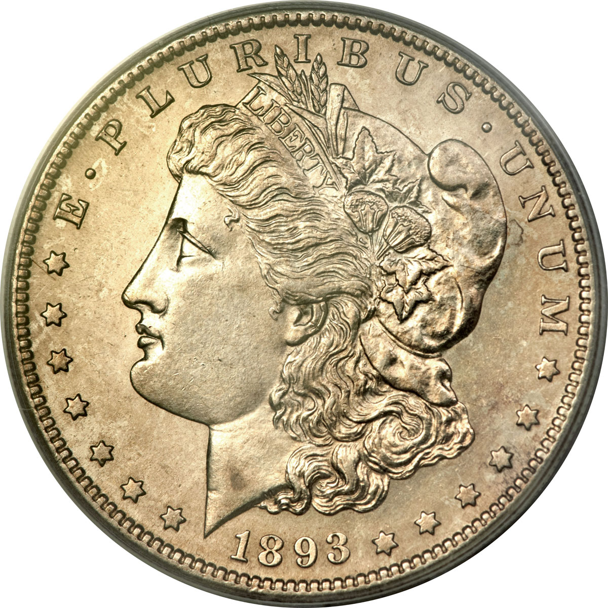 Rare Collector Coins Lead Summer Fun Offerings