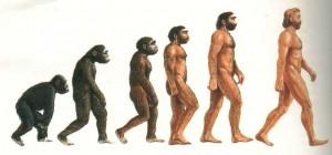 LA CLASSICA RAPPRESENTAZIONE DELL'EVOLUZIONE UMANA
