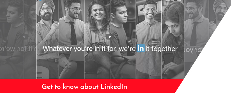 the future of linkedIn 2019