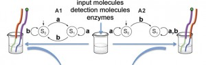 Decoding DNA with biological molecules