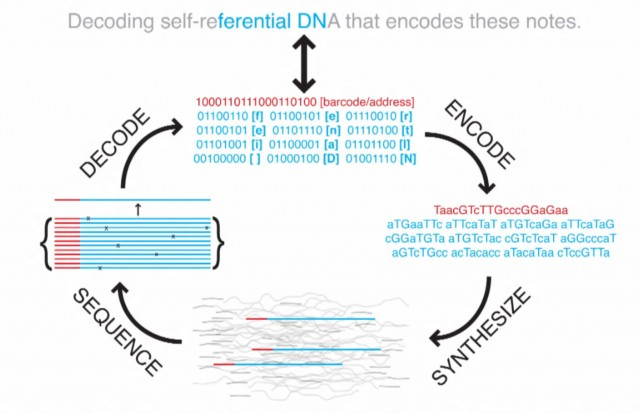 Encoding and decoding DNA data storage