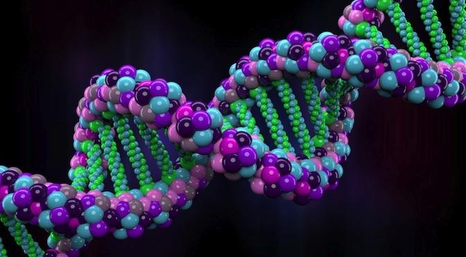 Encabezado ADN