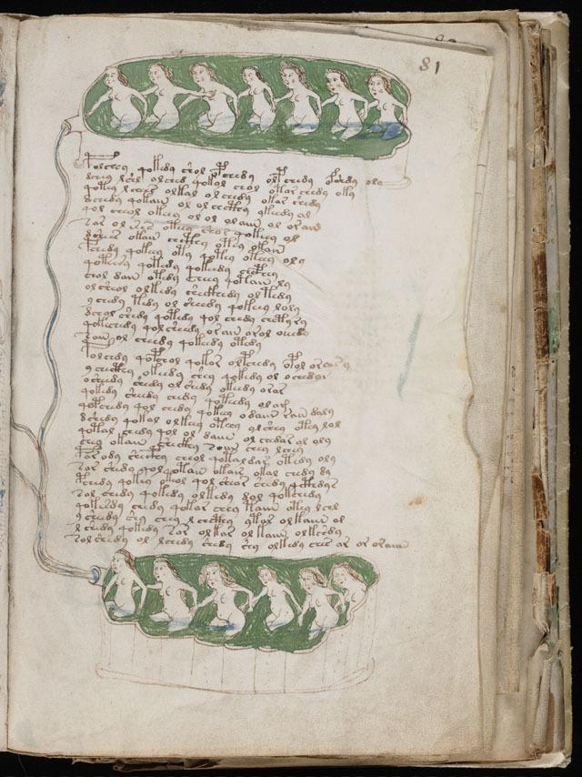 Voynich Manuscript page
