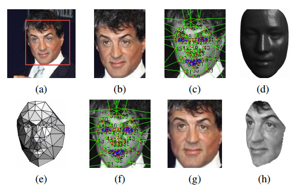 Sylvester Stallone, going through DeepFace's forward-facing algorithm