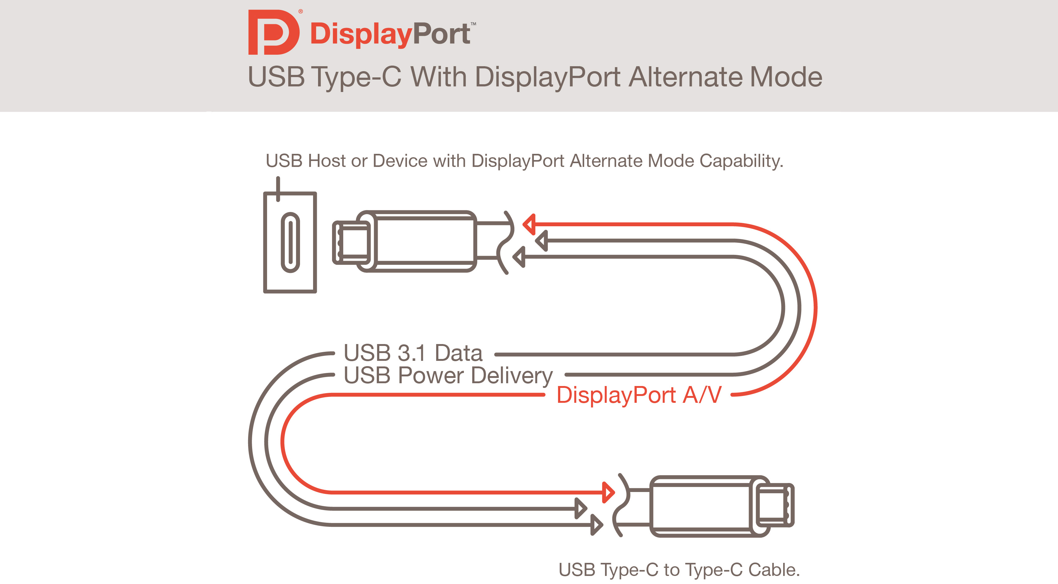 Usb Type C Connector Will Also Support Displayport Finally One Cable Will Fit Every Hole
