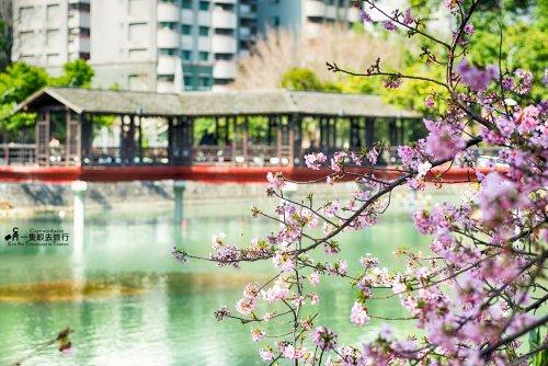 新竹公園│Hsinchu Park