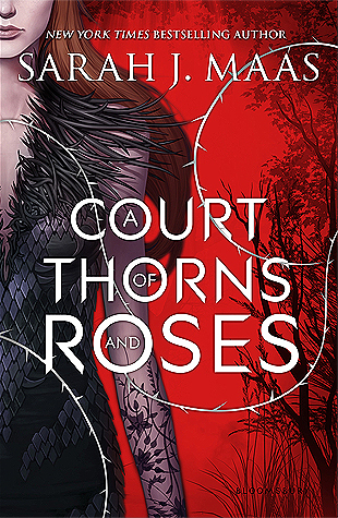 When the Beast Remains A Beast For All Time   A Court of Thorns and Roses by Sarah J. Maas    Book Review
