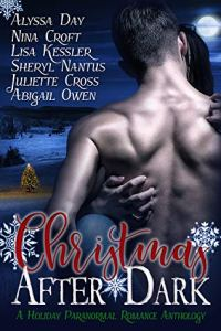 Christmas After Dark Anthology