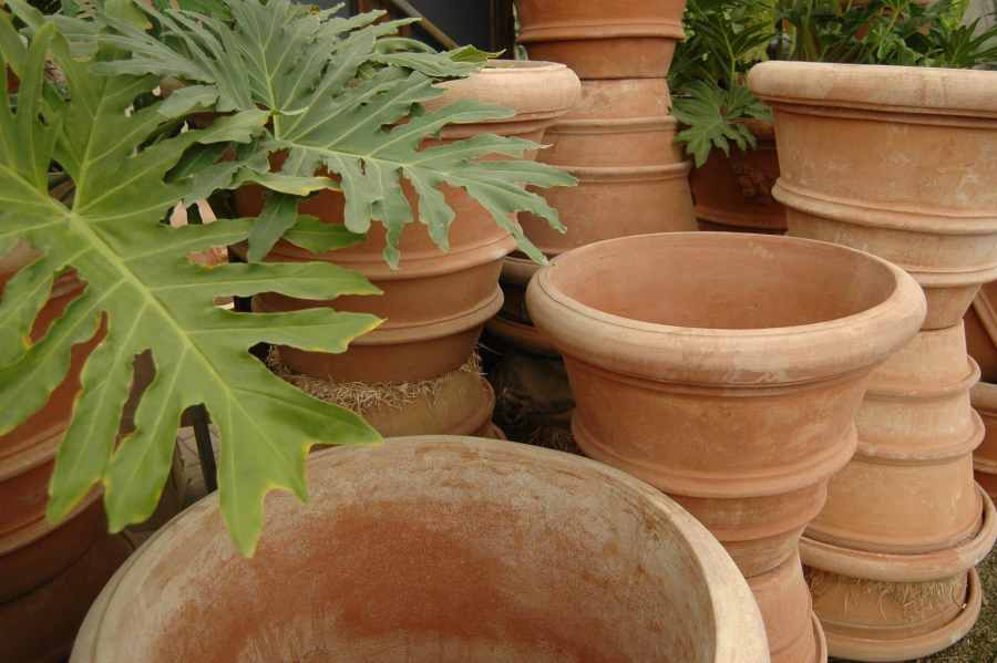 Terra Cotta Planters   Pots   Eye of the Day Garden Design Center Site MapPrivacy PolicyDisclaimer
