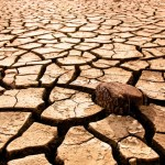O'Malley Requests Federal Drought Assistance