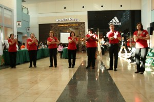 Hands of Harmony performs at the 2013 Disability Awareness Day