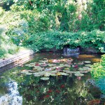 Annapolis secret garden tour (June 7-8, 2014)