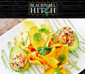 Blackwall Hitch Food Dish
