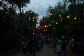 Electric-Forest-2015-020