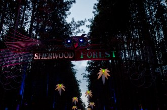 Electric-Forest-2015-021