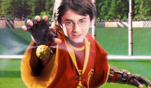 Harry Potter Plays Quidditch
