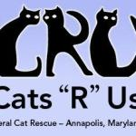 Shopfunding for a Cause. This week's spotlight  Cats R Us Feral Cat Rescue