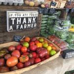 AAEDC launches Arundel Grown, a guide to local farms and produce suppliers