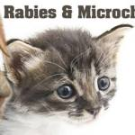 Low-Cost Rabies, Microchip clinic on October 17